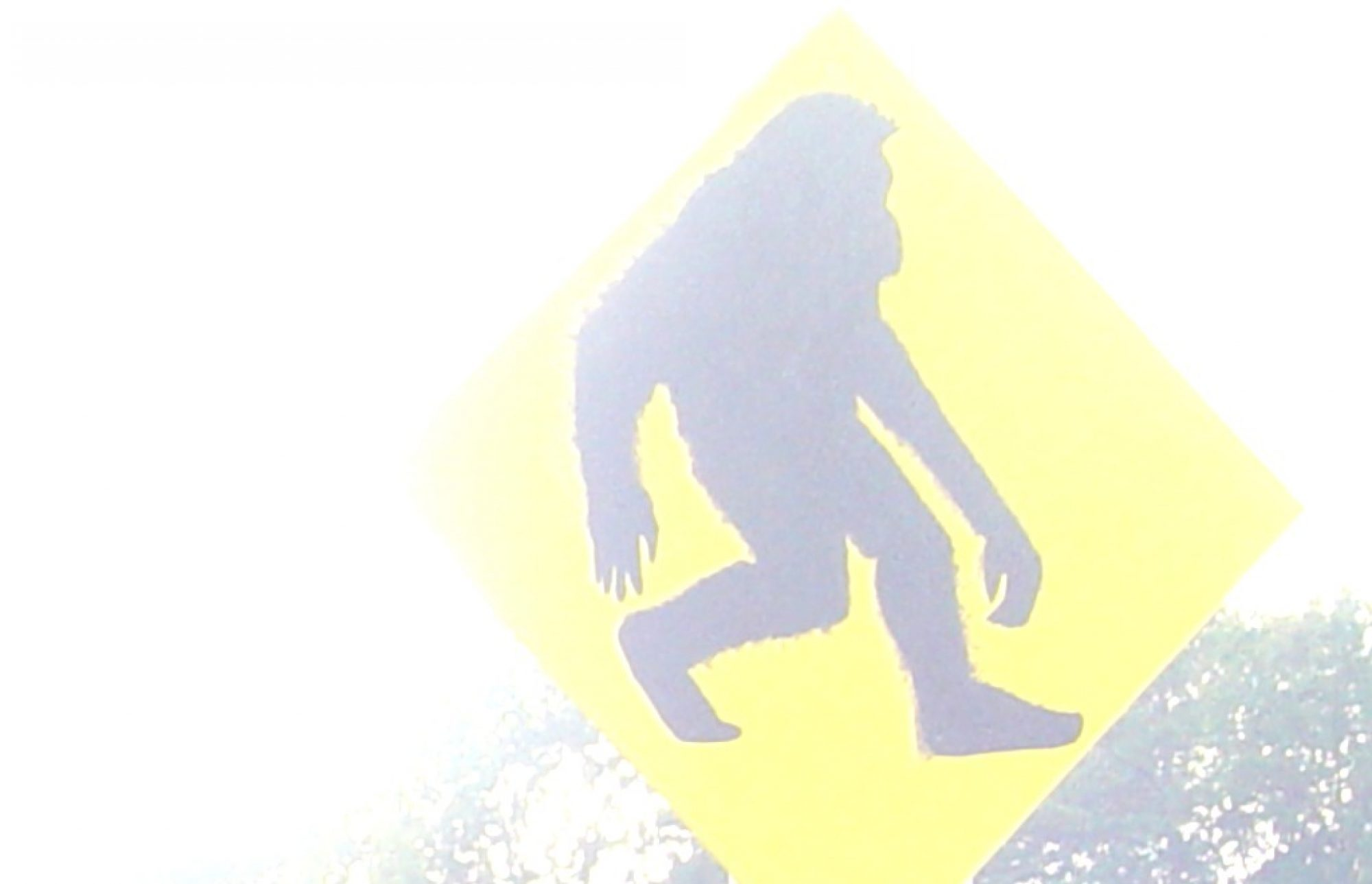Oklahoma Bigfoot